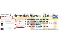 Option Links Product to Cart